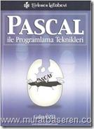 Pascal ile programlama teknikleri