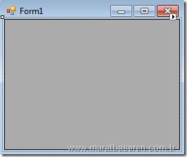 Form'a DataGridView eklenmesi.