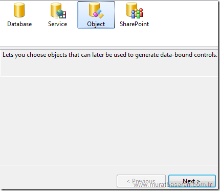 Binding Source kontrollerinin DataSource ayarlarının yapılması.