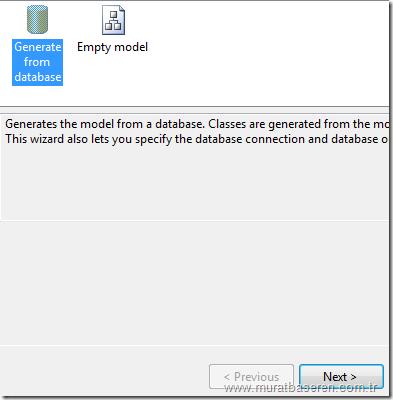 ADO.NET Entity Framework Model eklenmesi.