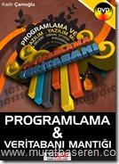 Programlama ve veritabanı mantığı