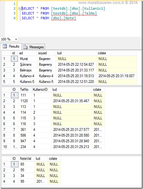 Entity Framework 6.0 ile Veri tabanı Tablolarındaki Ortak Kolonları Güncelleme